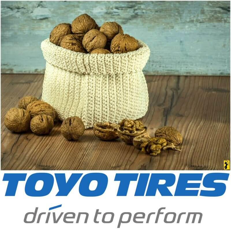 Journée Mondiale de la Terre - Toyo