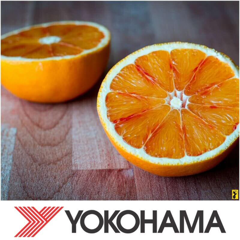 Journée Mondiale de la Terre - Yokohama
