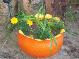 recyclage automne jardinière